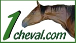 1cheval.com le moteur du cheval
