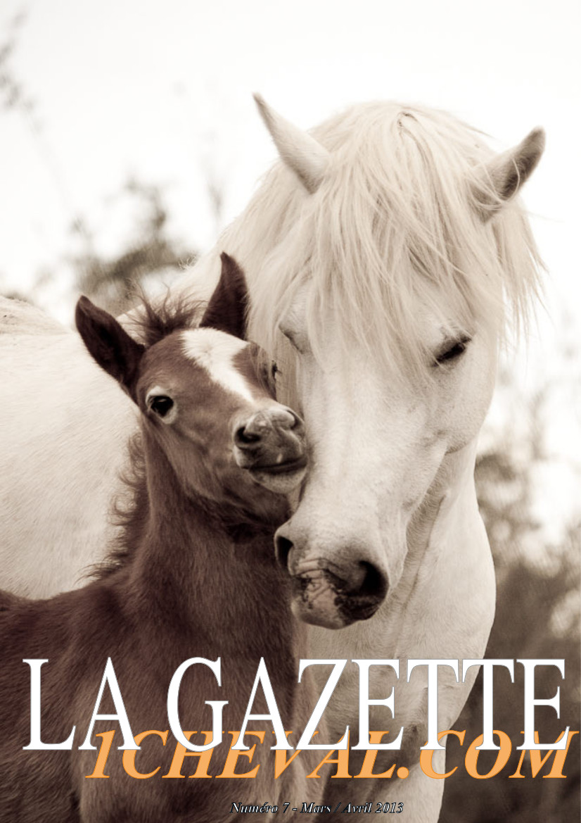 La Gazette 1cheval.com