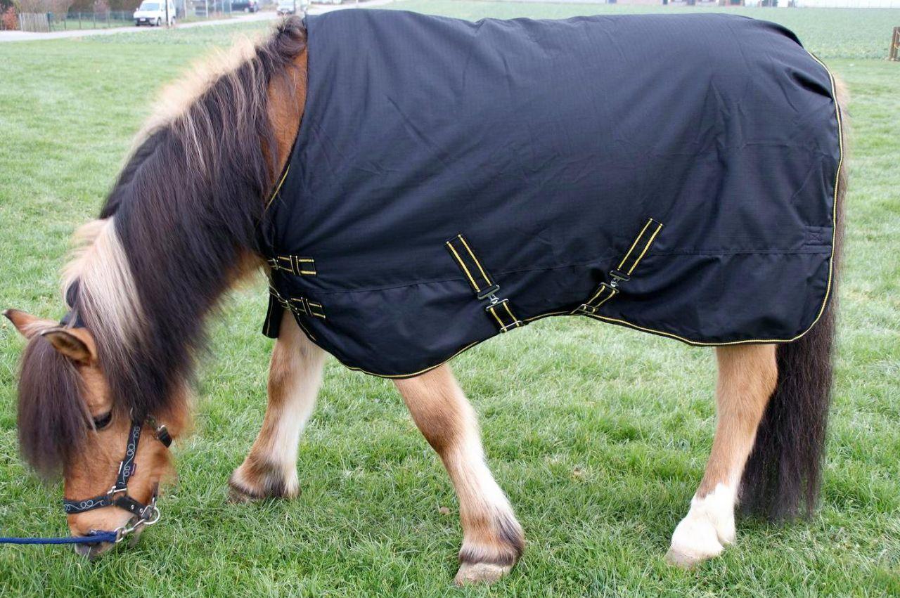 mat riel shetland sp ce rare 3 forum cheval. Black Bedroom Furniture Sets. Home Design Ideas