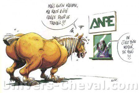 Dessins rigolos quitation 1 forum cheval - Dessin humoristique musculation ...