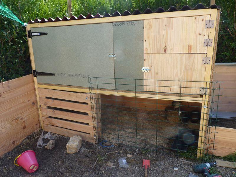 Avoir des poules chez soi page 24 - Avoir la fibre chez soi ...