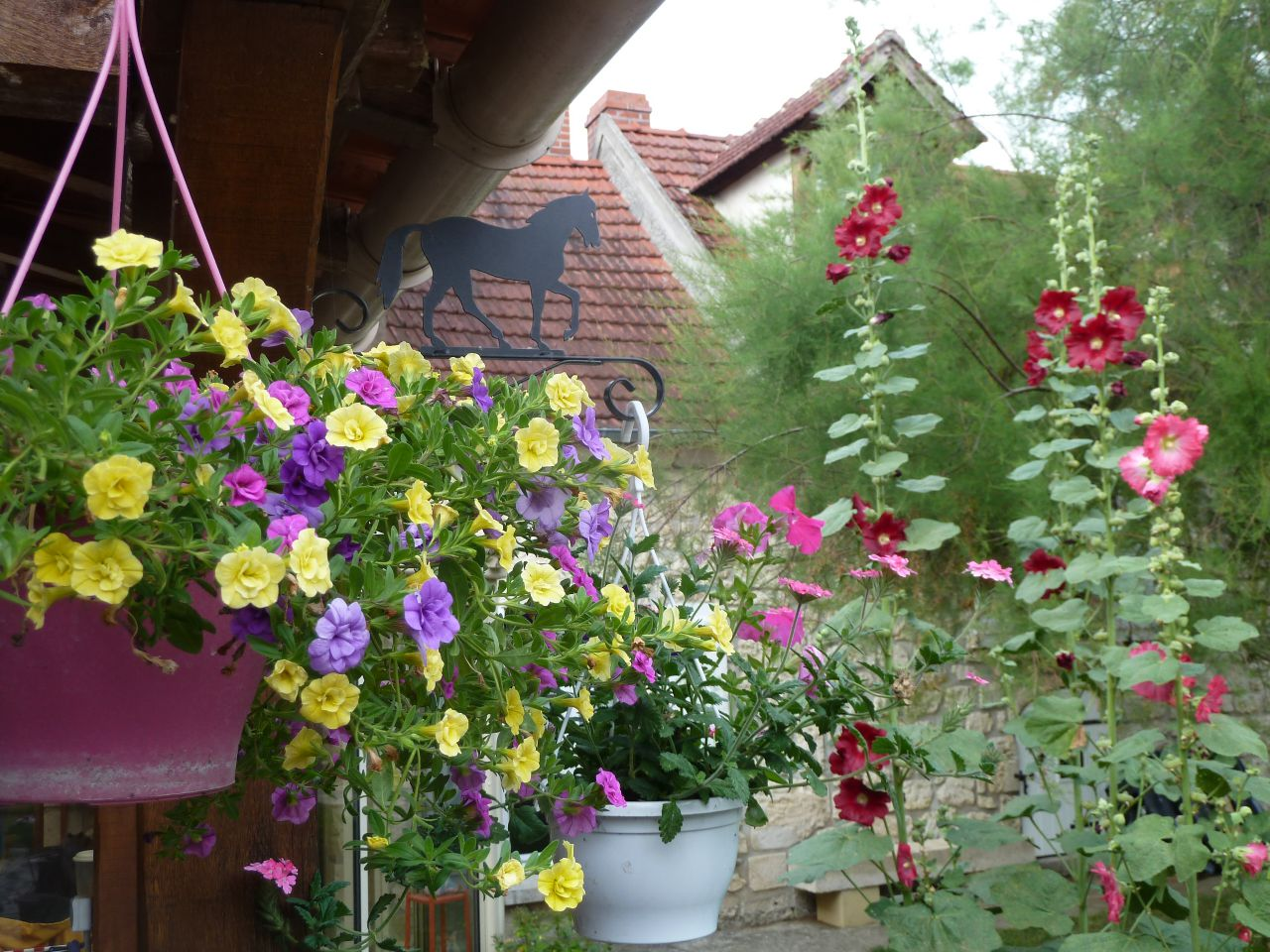 Post Du Jardinage 4 Forum Cheval