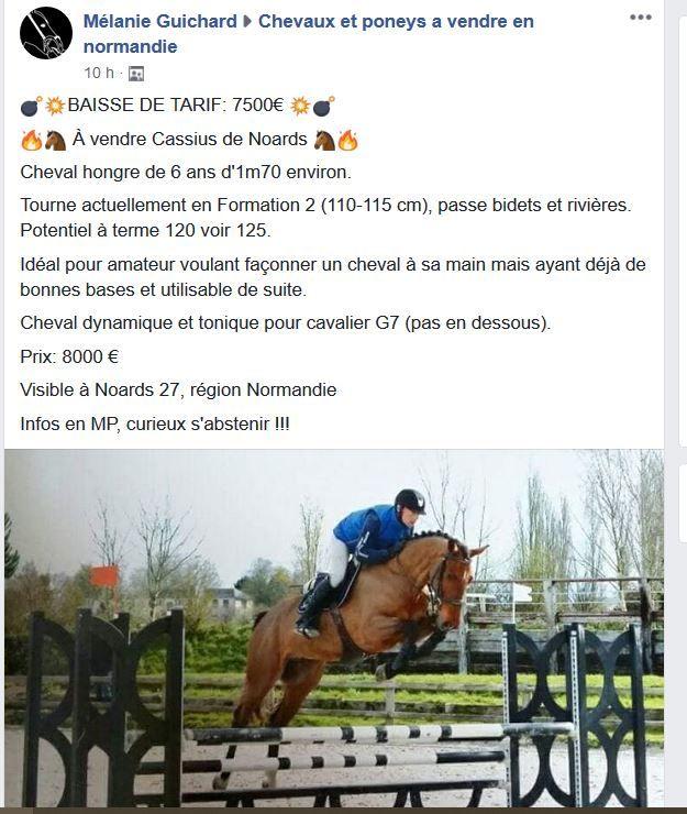 Acheter Un Cheval 20 4 Forum Cheval