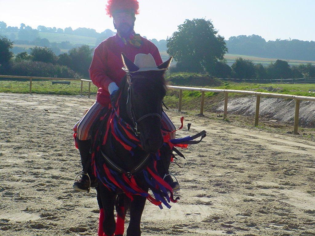 forums  deguiser un cheval