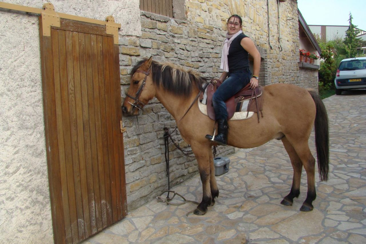 Rebelle montage vid o 1 forum cheval - Cheval rebelle ...