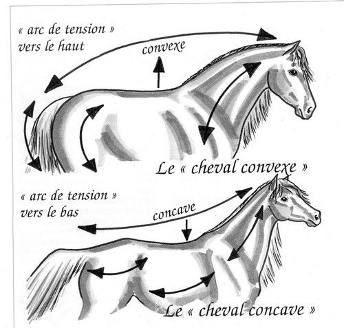 rencontres equestre beaucaire 2015 Chambéry