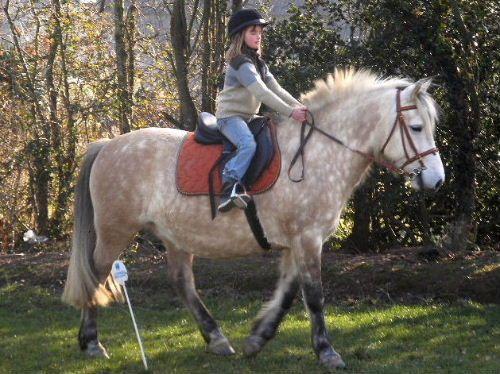 Ma cavaliere monte sur ma queue - 3 1