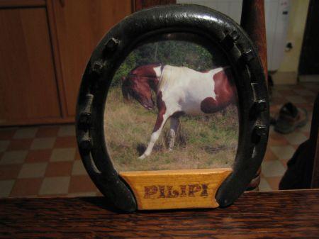 id es plaques de box 1 forum cheval. Black Bedroom Furniture Sets. Home Design Ideas