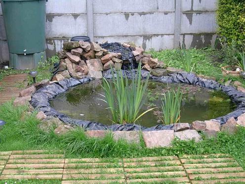 Bassin dans jardin 2 forum cheval - Quand mettre du fumier de cheval dans le jardin ...