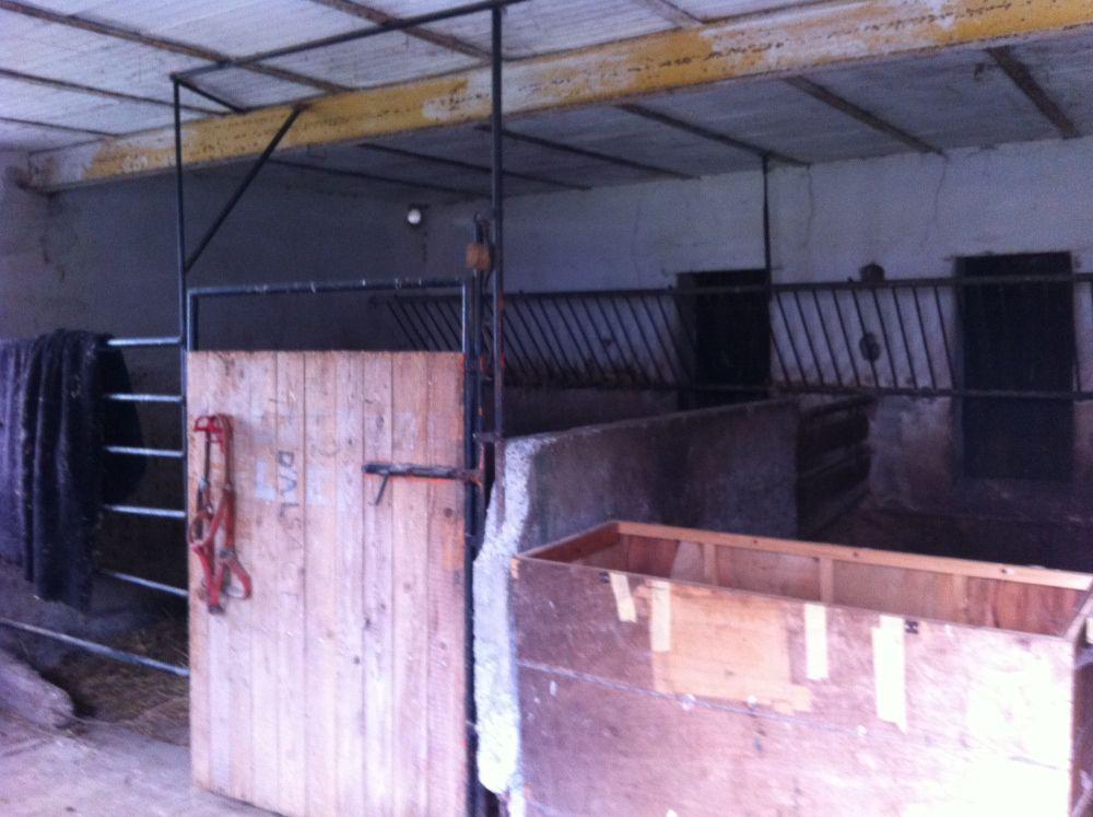 cheval chez soi oui mais 2 forum cheval. Black Bedroom Furniture Sets. Home Design Ideas