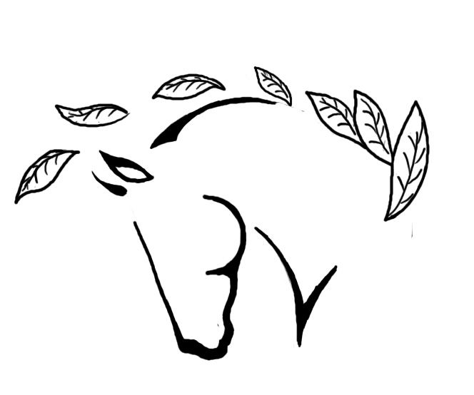 Images Of Pin Tribal Unicorn Tattoo Design New Pictures Page 2 Picture as well Din A5 Masse In Cm 47850 in addition Magix Video Deluxe Premium additionally Diskussion Vinken Berg Lischka Liebe Diskurs100 further Tabella  parativa. on dsl logo