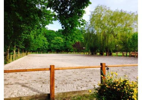 Ecurie de la fourasse : pensions/locations chevaux et poneys