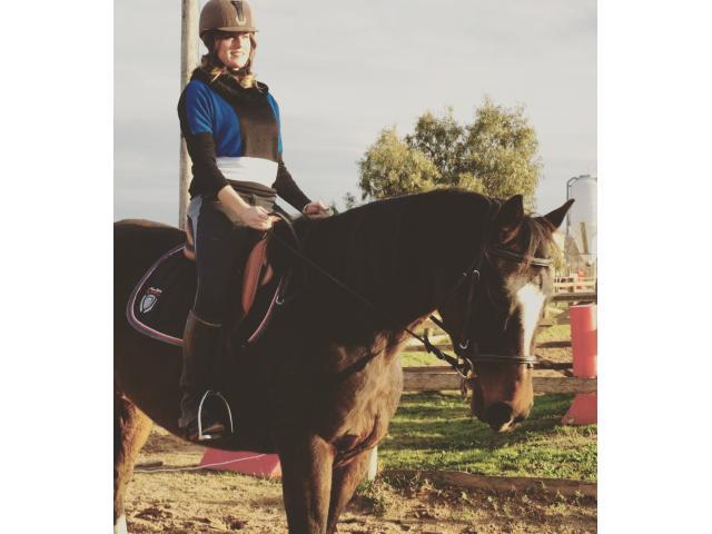 Vente cheval de sport 9ans
