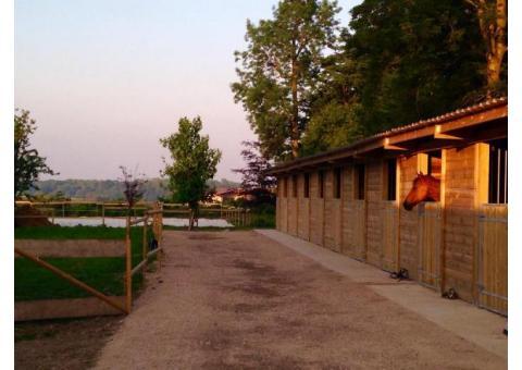 Pension chevaux en Picardie