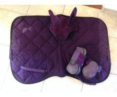 Ensemble violet Equi-Theme