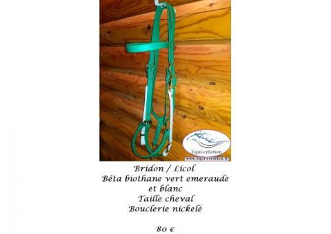 Bridon/Licol