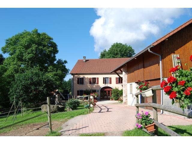 Ferme Equestre dans les Vosges