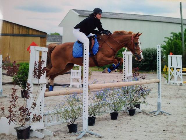 centre equestre uchaux