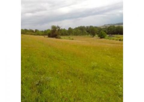 location de patures