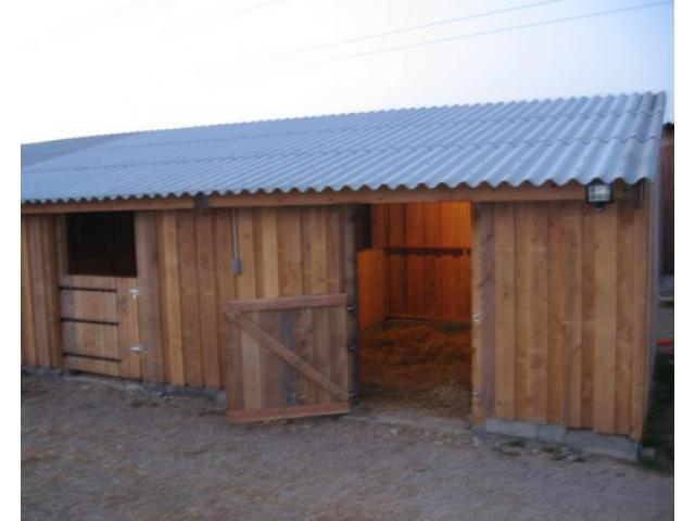 Nouveau pension cheval/poney 10 min de Blagnac