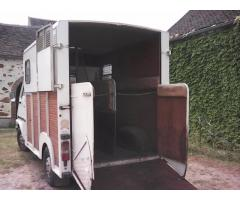 Camion Master Transport 2 Chevaux