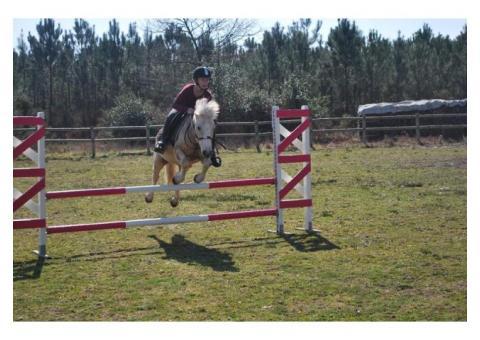 cherche cavalier poney