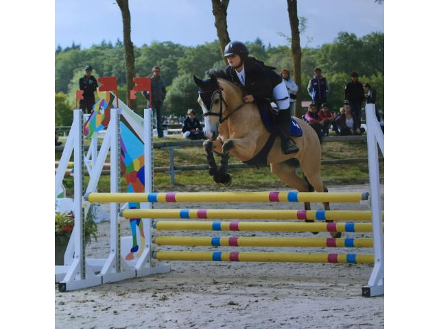Pension / Demi pension - Ponette D - CSO - 9 ans